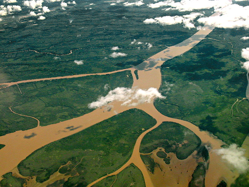 Aerial_view_of_the_Lower_Paraná_Delta Image