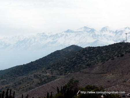 Los Andes winery and mountains image